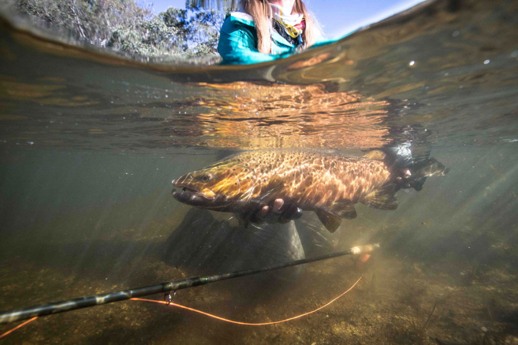 The ultimate eucumbene rod aussie fly fisher for Peak fishing times