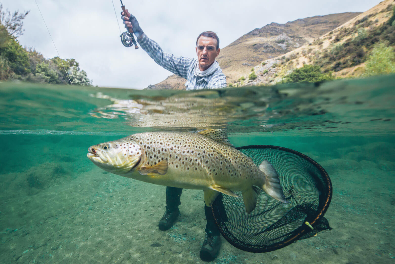 aussie fly fisher fly fishing australia fly fishing guide